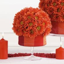 Small Gerbera Sphere Arrangement