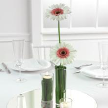 Basic Centerpiece