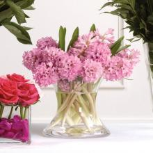 Pink Hyacinth Vase Arrangement